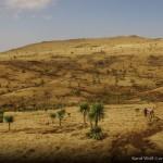 Etiopie 2011 (275)