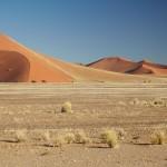 Vit Krsul - namibie duny