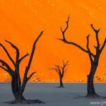 VACLAV SILHA - namibie (1)