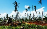 Filipiny - po tajfunu (4)