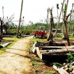 Filipiny - po tajfunu (5)