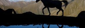 anotace_kyrgyzstan_2479_r
