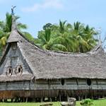 Ales Ondrovcik - Papua Nova Guinea  (2)