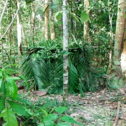 Frantisek Klein - Amazonie (1)