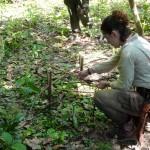Frantisek Klein - Amazonie (3)