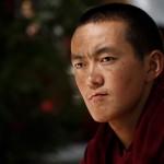 Vitek Hrubecky - lhasa (7)
