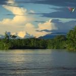 MARTIN PAVEK - AMAZONIE - an