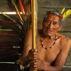 MARTIN PAVEK - AMAZONIE - an01