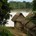 MARTIN PAVEK - AMAZONIE - an1