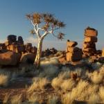 Vita Krsul - Namibia