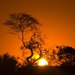 Zuzana Samkova - zapad slunce v Serengeti