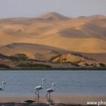VACLAV SILHA - namibie (2)
