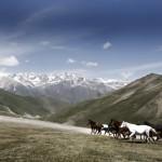 Garik Avanesian - kyrgyzstan - 117_1T3E0058