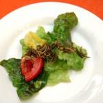 Milan Vaclavik - hmyzi kuchyne - 4 Hmyz