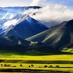 china-xinjiang-travel-landscape-702-2
