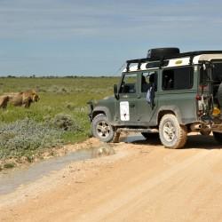 Jan Stovicek - afrika - 05.Namibie NP Etosha