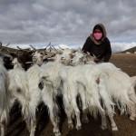 Jana Neboráková a Nela Boudova - Nomádi v Himálajích