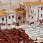Maroko - Karel Wolf (3)