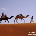 Maroko - Karel Wolf (4)