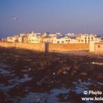 Maroko - Karel Wolf (7)