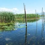plavba v deltě Neretvy