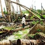 Filipiny - po tajfunu (9)