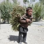 Pavel Bem - afghanistan (3)