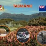 kamila hnykova - tasmanie