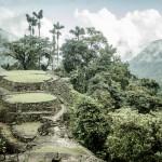 Mart Exlem - kolumbie - DSC_4451